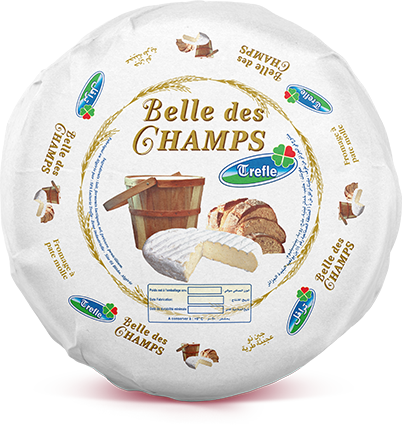 Tlemsani groupe, Fromages